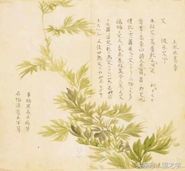 国=成语,长知识!这些常用的成语,原来都出自《诗经》,收藏学习!