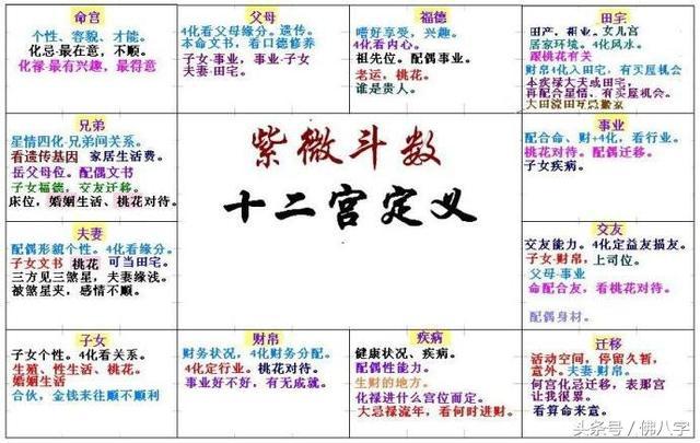 八字排盘神煞,想成为有钱人?教你从紫薇斗数、八字、相学来分析!