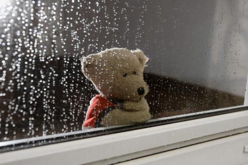 下雨的短句,15个下雨天的朋友圈说说(起风了,我的城市下雨了)