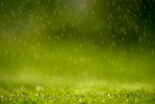 描写春天的句子,关于春雨的说说大全 优美句子描写初春景色