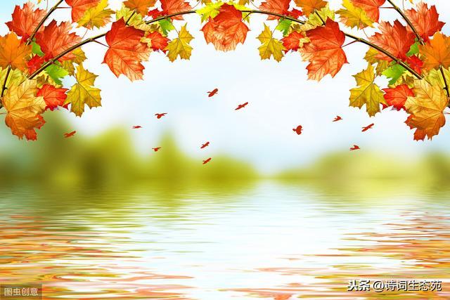 梧桐的诗,10首诗词话清秋:人烟寒橘柚,秋色老梧桐