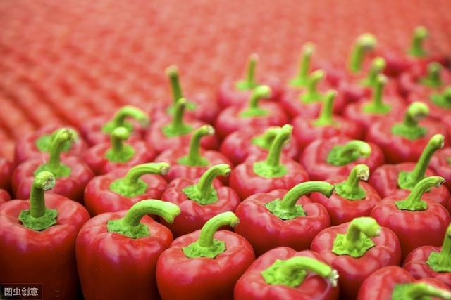 椒的品种,辣椒品种丰富,哪种最辣?
