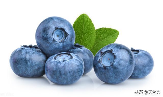 蓝莓的吃法,蓝莓怎么保存,用实用的方法,才能吃上鲜嫩的蓝莓