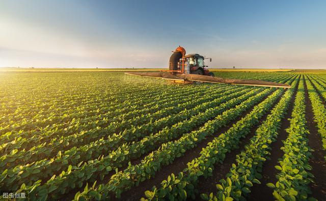 品种权,建立品种权保护长效机制 提高种业核心竞争力