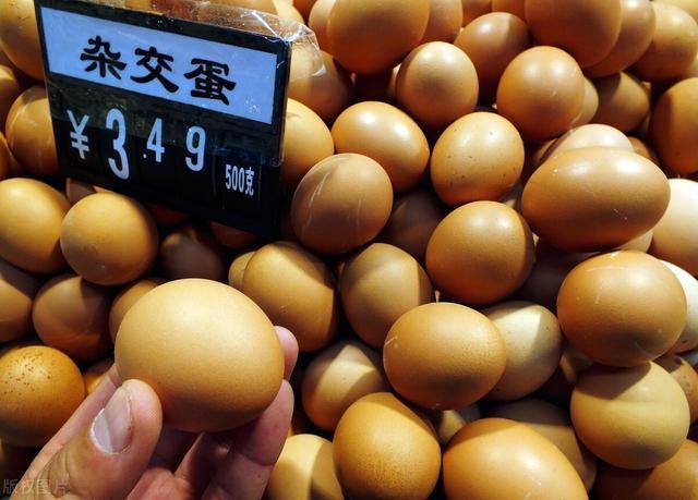 2019年鸡蛋价格行情