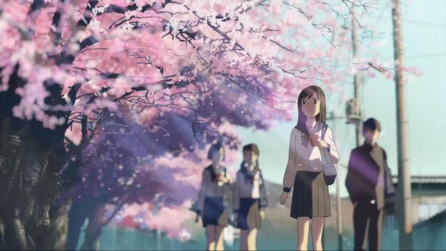 3月15日是什么节日,樱花祭|春来疫去,不负花期