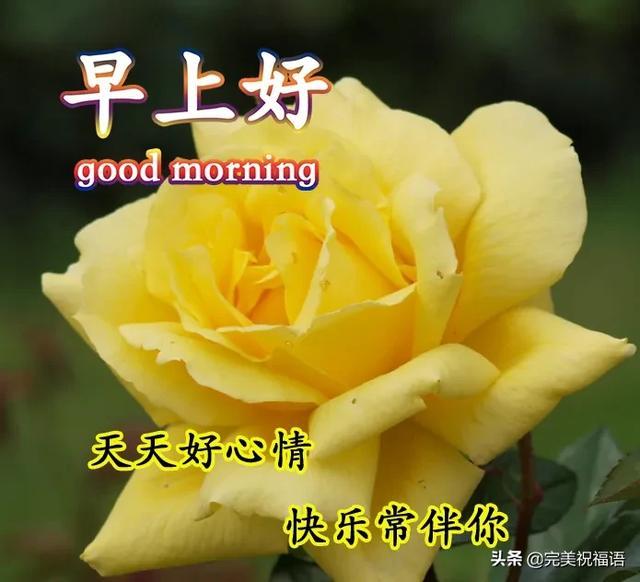 一起祝福语,真正的生活,有时不在于拥有多少,而在于和谁在一起,早安