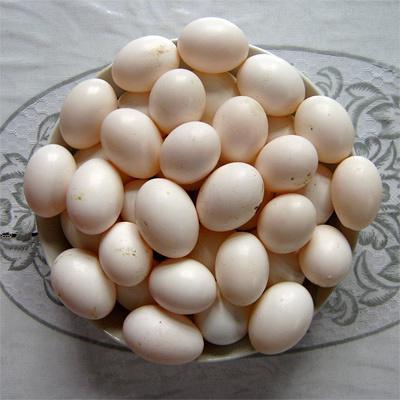 """鸽子的寓意,鸽子蛋仅指粉钻?你知道""""鸽子蛋""""的真正含义吗?"""