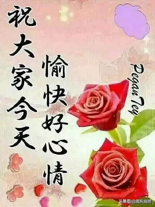 守护的句子,人心,需要互相守护;感情,需要共同维护,早安