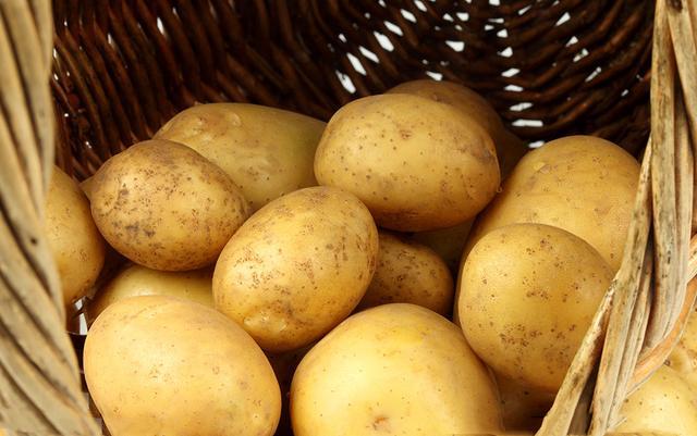 土豆丝怎么炒好吃,土豆丝怎样炒才好吃,西瓜视频有办法,教你把家常菜做成佳肴