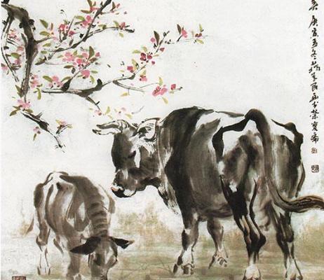 属牛犯太岁,百年苦易满,61年的苦命牛,现在57岁大限已到,佛说一切是天意!