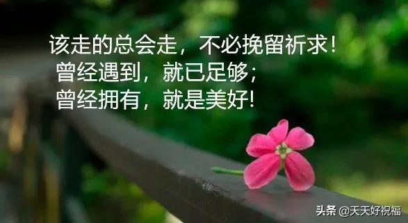 感慨人生的句子,适合发朋友圈的人生感悟语录 人生哲理说说句子