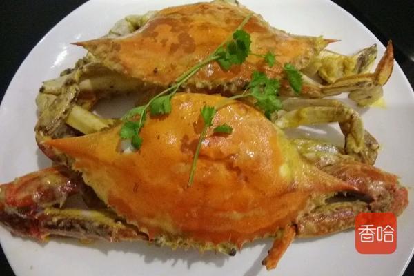 蟹的品种,螃蟹中到底哪个品种最好吃,尝尝这一个一定不会让失望
