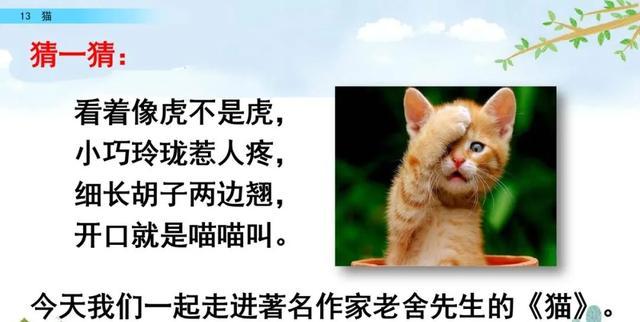 成语 猫,部编四年级语文下册第13课《猫》知识点及课堂测试题