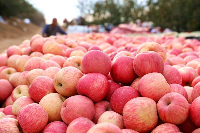 """苹果营销,""""免费模式""""案例:果农用免费模式+社群营销,3天销七千斤苹果"""