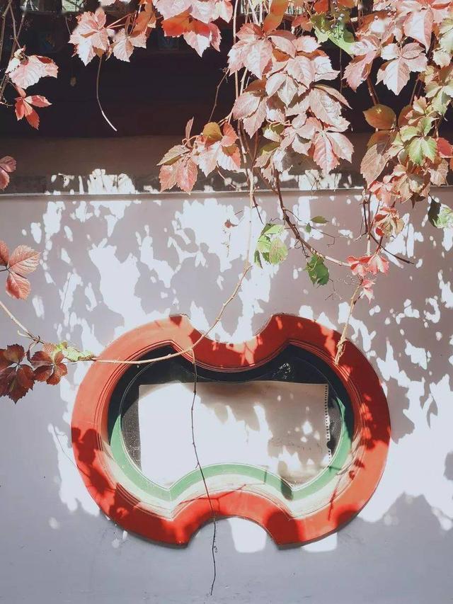 美景的句子,人生处处是风景,花落片片皆温情