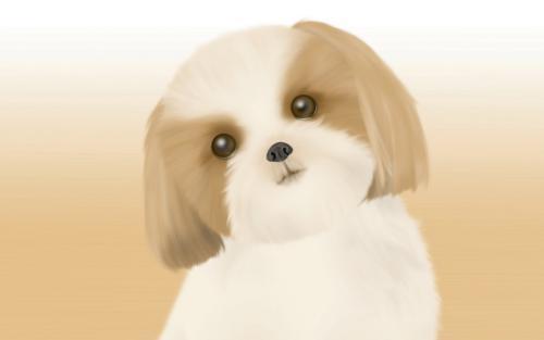 动物好词好句,语文同步学投稿范文分享:动物篇——狗(含名师点评)