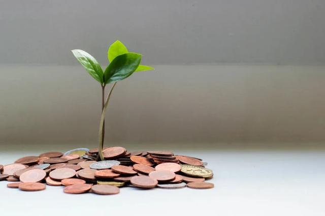 投资=资本,投资自我资本:时间、金钱和三大能量,可获滚雪球般的回报