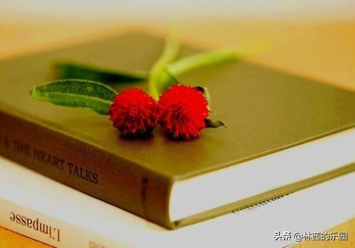 清新的诗,18首婉约诗词,清新唯美,时光只能催人老,不信多情~