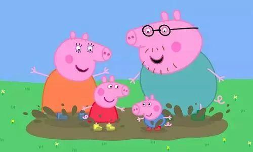 """我属猪,""""我属猪,今年是我本命年。"""" 英语怎么说?"""