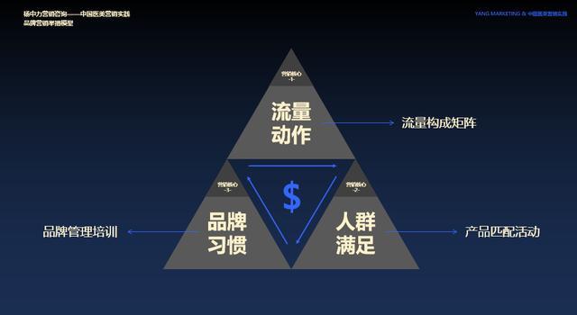 """网络营销咨询服务,杨中力:医美行业如何通过""""深化流量""""提升业绩"""