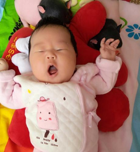 """三个月婴儿发育指标,""""一哭、二笑、三认母"""",3个月宝宝的发育规律,有趣又可爱"""