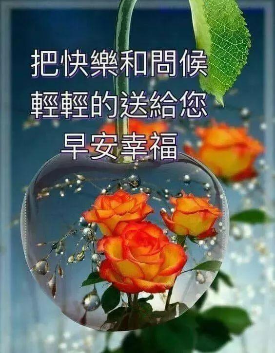 歌的句子,生命中,总有一首歌曲,沁入心灵;总有一种眷恋,默默相依,早安