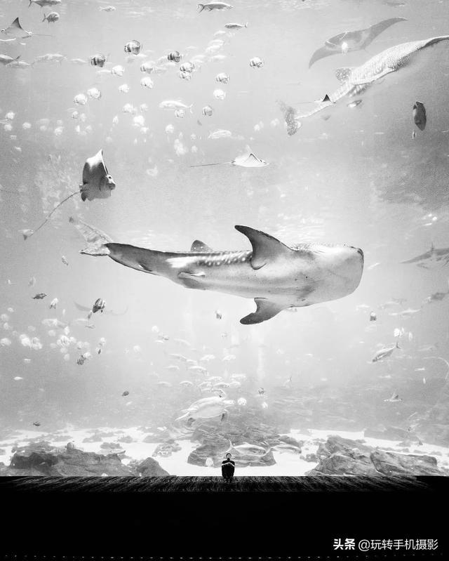 黑色图片,黑白照片,教你拍出触及灵魂之美