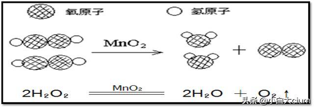 初中化学:物质结构的奥秘—分子和原子