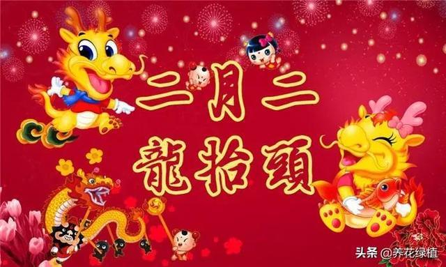 """中国传统节日习俗,俗话说:""""二月二,龙抬头"""",看看有哪些说法和风俗"""