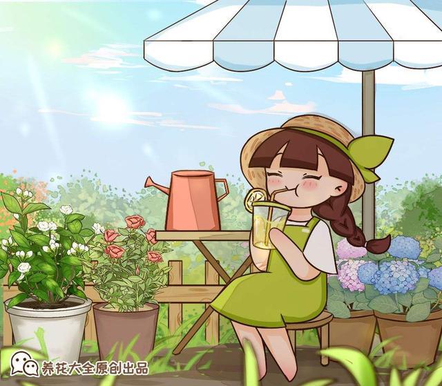 花的品种,家里有院子的一定要养这4种花,庭院秒变花园,芳香四溢