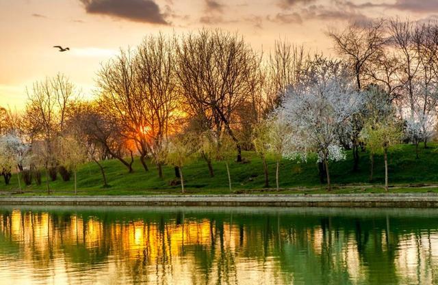 写春色的诗,叶绍翁笔下的一首绝美诗作,短短4句,写尽了春天的美