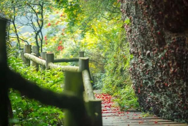 剑门关风景区,「剑门关」穿越蜀道,遇见最美的剑门关