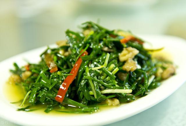 韭菜的做法大全,韭菜炒鸡蛋(三分钟快熟下饭菜)