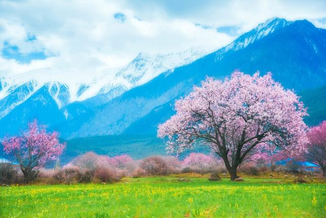 """中国旅游景点,最美旅行清单∣""""中国50个之最""""的景观,你去过几个?"""