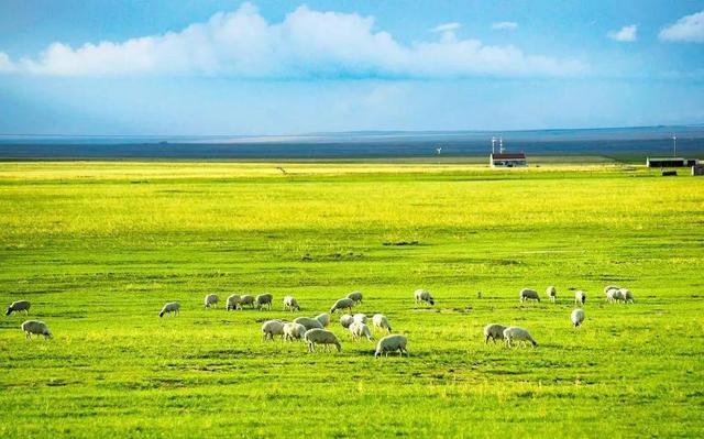 内蒙古自治区如今的富豪杜江涛的发展趋势之途