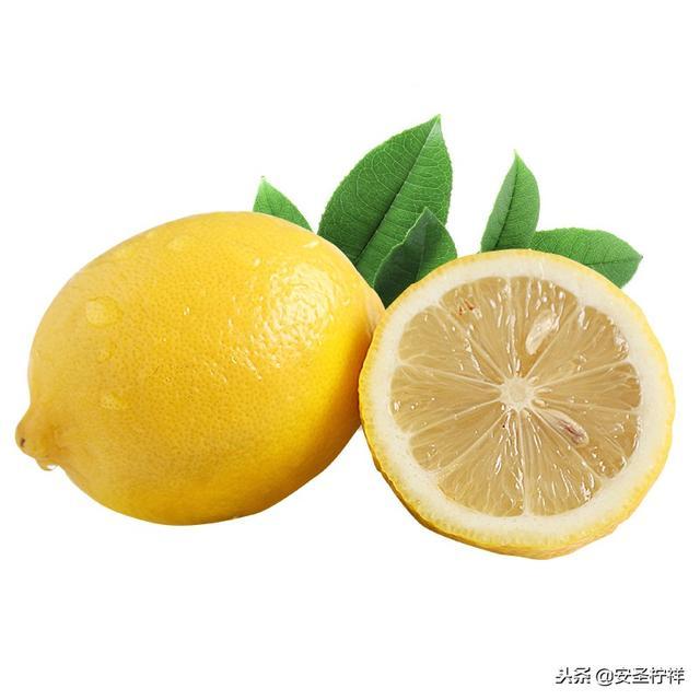 属猪人祥,安岳的特产,安岳柠檬