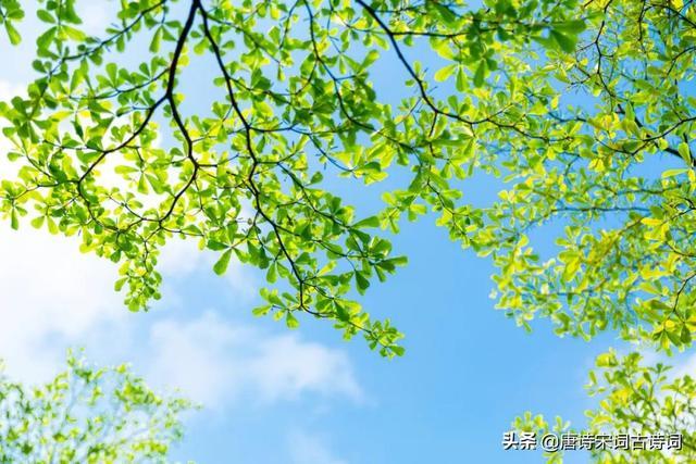 描写夏天的诗,古人的夏天