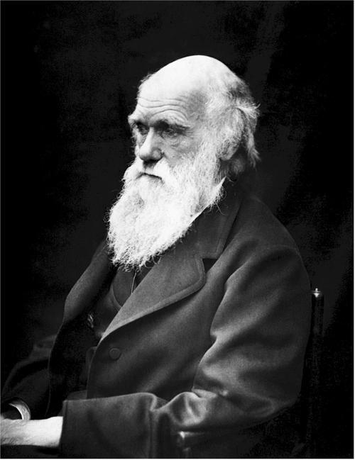 科学的好句,博物学家达尔文的20则经典名言:只有服从大自然,才能战胜大自然