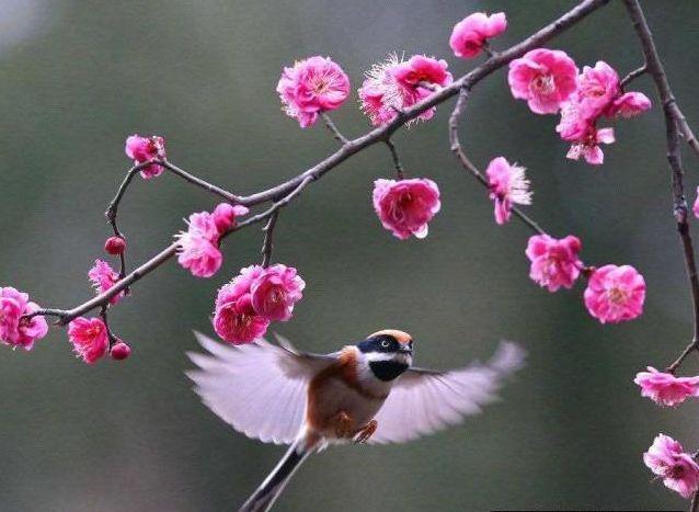 关于亲情的句子,看透人情冷暖的句子,每一句都深入人心!
