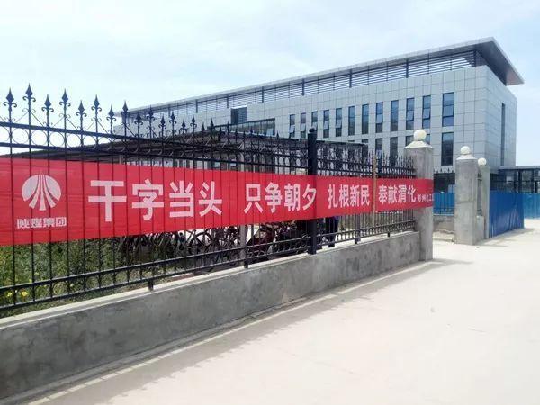 """西游记的好词好句,彬州""""西游记""""之""""金句""""集"""