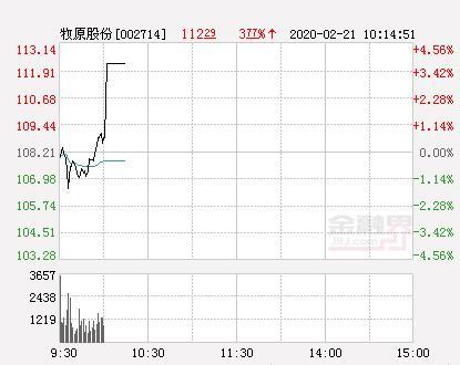 牧原股份股票,牧原股份大幅拉升3.96% 股价创近2个月新高