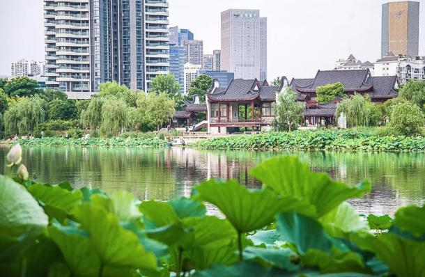花卉批发市场,武汉最值得一逛的花市指南.doc