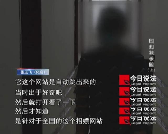 """黄网页,重拳出击!涉黄网站""""狼乐园""""被打掉"""