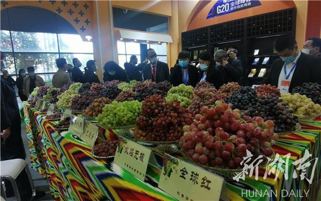 吐鲁番美食,逛农博丨真馋人!吐鲁番带来了73种鲜食葡萄