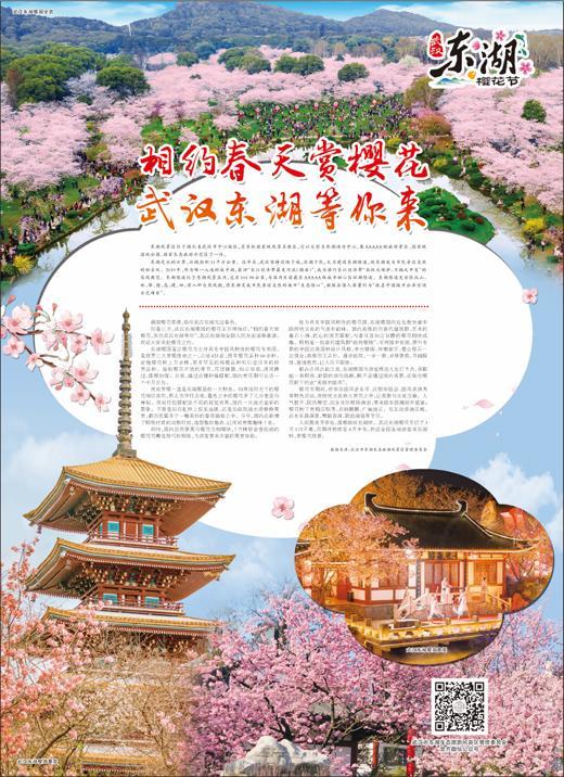 武汉东湖风景区,相约春天赏樱花 武汉东湖等你来