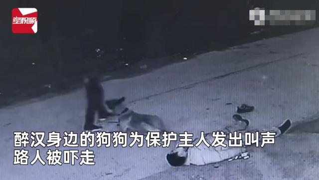 主人醉倒路边宠物狗忠心死守身旁!连声吼叫求救,路人却反被吓跑 全球新闻风头榜 第3张