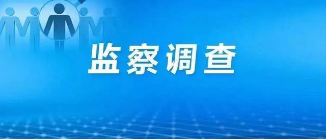 营销总监,上海华谊精细化工销售有限公司新光铁锚事业部销售总监陈华主动投案接受监察调查