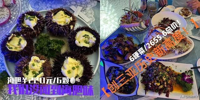 三亚某饭店出售海胆蒸蛋没有海胆、小龙虾被掉包及价钱过高难题