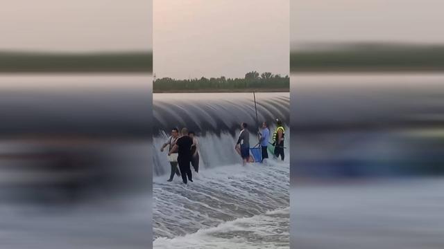 """39秒丨洛河现""""鱼跳龙门""""奇观 数百村民冒险在橡皮坝下逮鱼 全球新闻风头榜 第2张"""